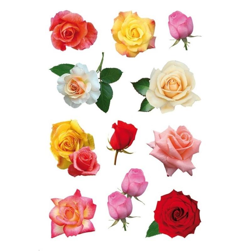 99x Gekleurde rozen bloemen stickers