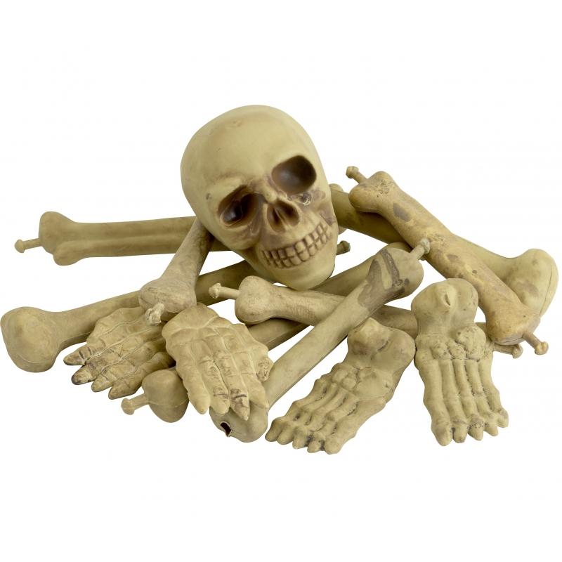Bot en schedel decoratie