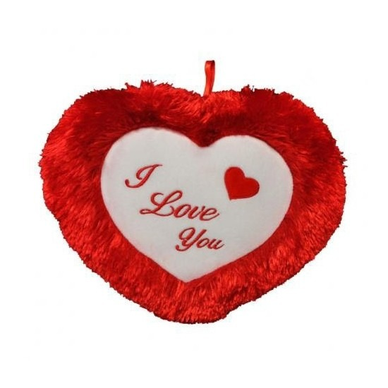 Pluche rood hart kussen I Love You 45 cm
