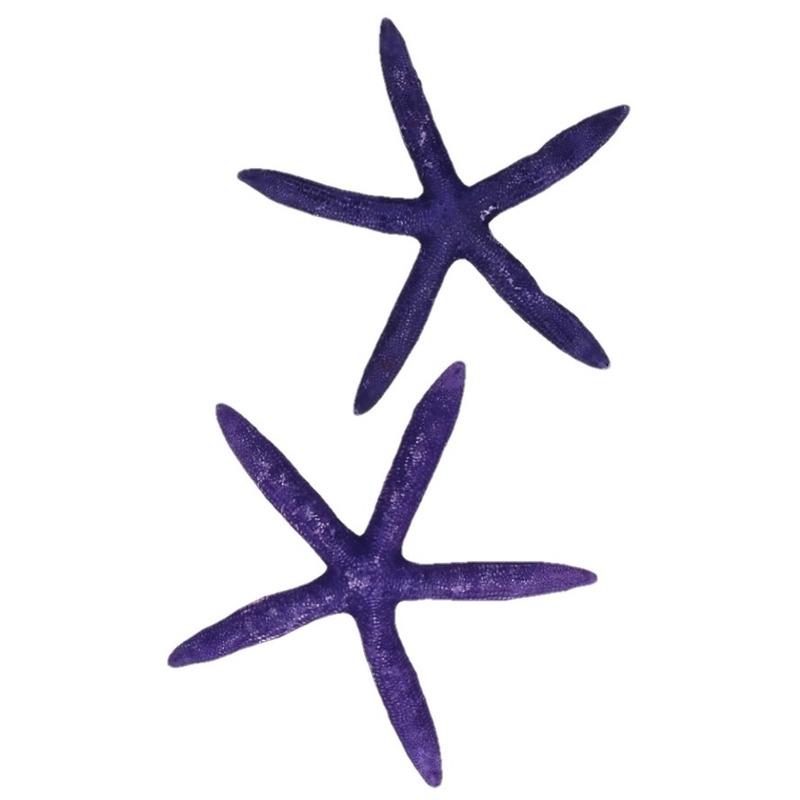Woondecoratie zeesterren paars